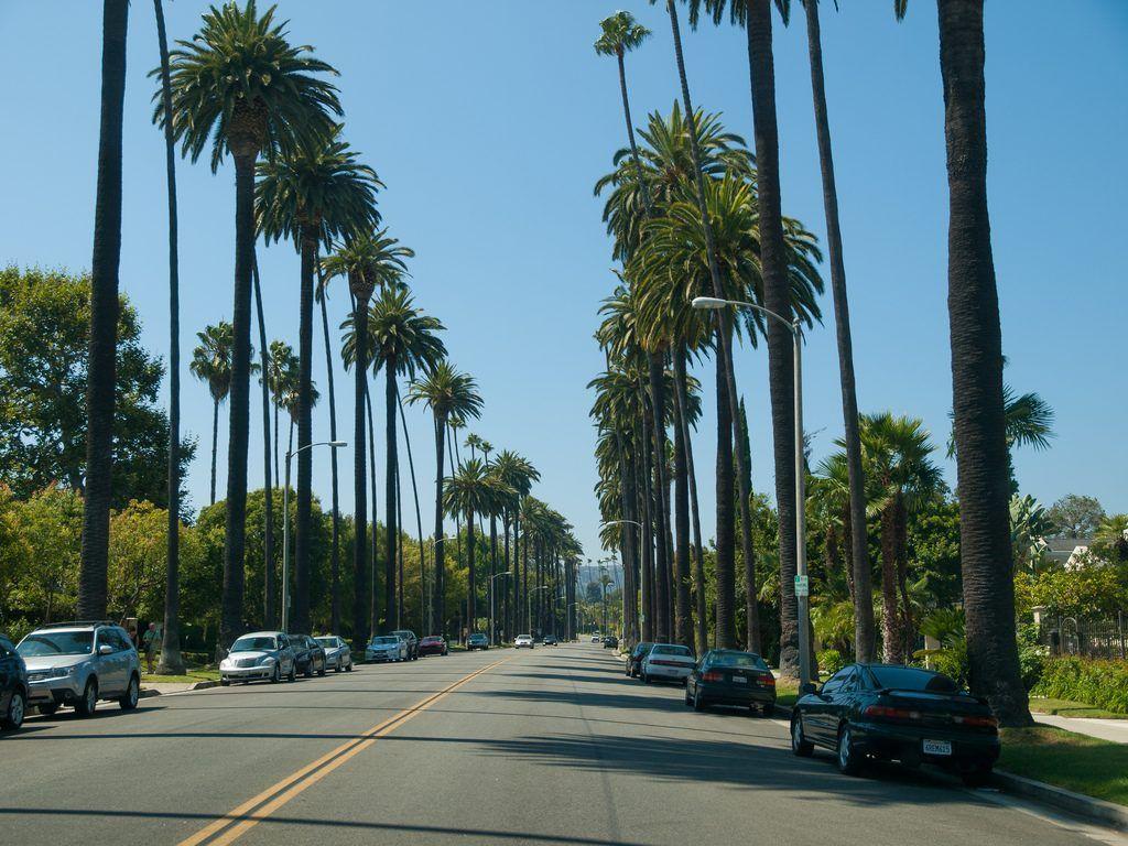 Rodeo Drive L.A.
