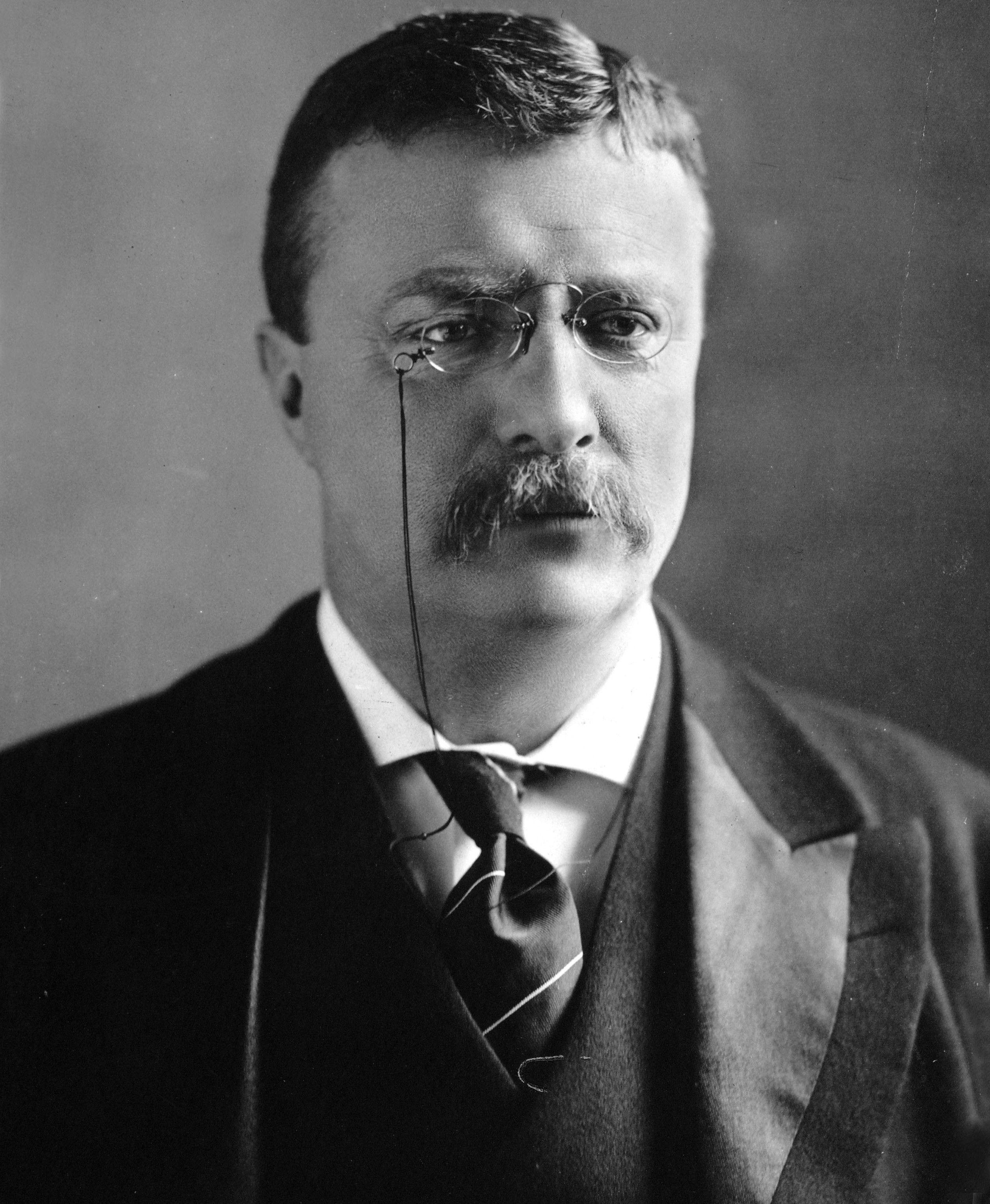 Theodore Roosevelt fue presidente de Estados Unidos desde 1901 hasta 1909. Crédito: Wikimedia Commons. Autor, M.P.Rice.