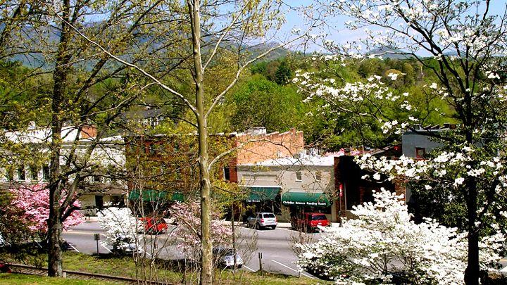 Tryon es un pueblito situado en el condado de Polk, en Carolina del Norte. Crédito: Wikipedia.