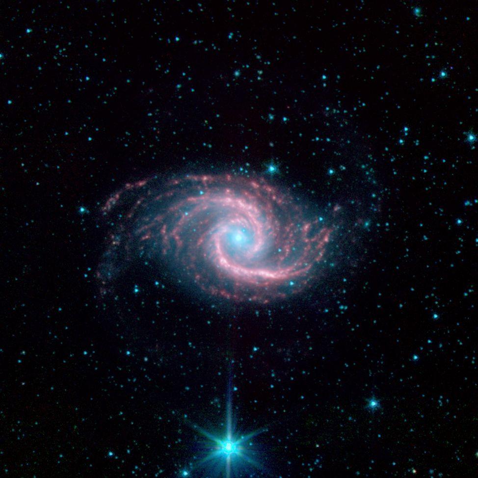 Galaxi NGC 1566